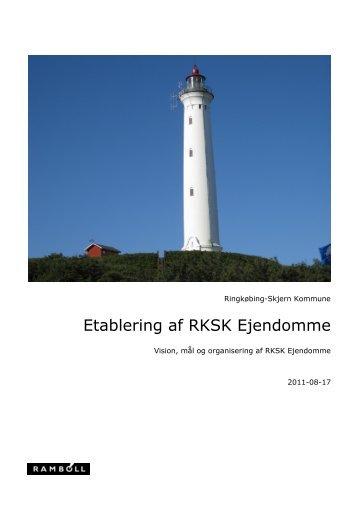 Rapport 1708.11 vision, mål og organisering.pdf - Ringkøbing ...