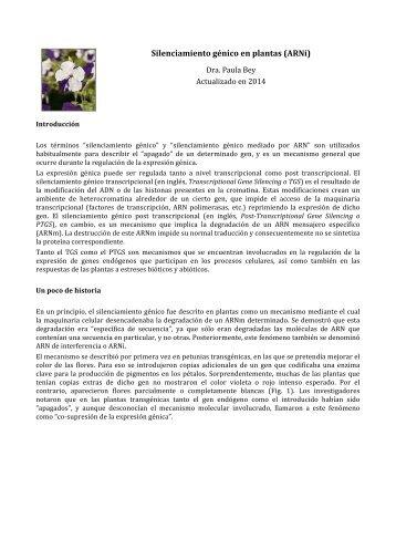 Silenciamiento génico en plantas - ArgenBio