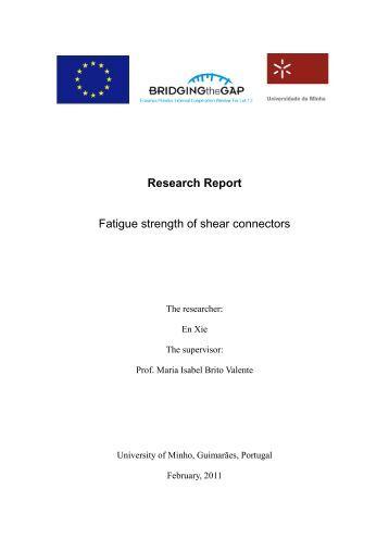 Research Report - Universidade do Minho