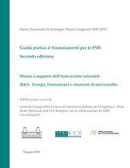 Guida PMI Fondi Strutturali Ungheria- II Edizione - Ambasciata d ...
