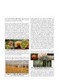 biologiques - Jejardine.org - Page 3