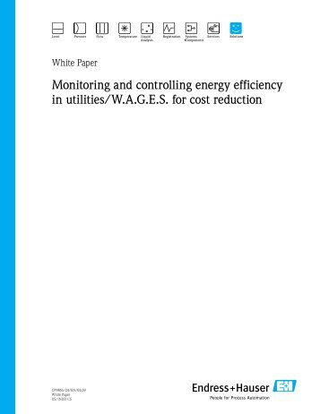 Monitoring and controlling energy efficiency in ... - Endress+Hauser