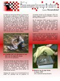 Nieuwsbrief 15 - september 2009 - Stichting ... - Page 5