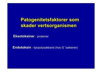 Patogenitetsfaktorer som skader vertsorganismen Eksotoksiner