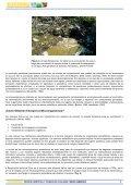 Más información sobre biorremediación - ArgenBio - Page 3