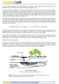 Más información sobre biorremediación - ArgenBio - Page 5