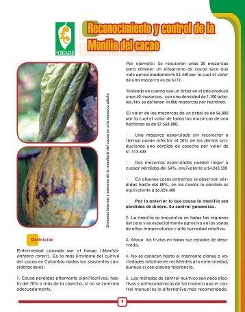 Reconocimiento y control de la Monilia del cacao Reconocimiento y ...