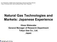 Natural Gas Technologies and Markets: Japanese Experience