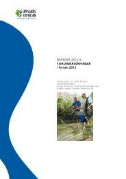 RAPPORT 2011/4 FISKUNDERSÖKNINGAR i Fyrisån 2011