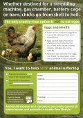 Does this little chick... - Animal Aid - Page 3