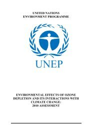 Environmental effects of ozone depletion and its interactions - REMA
