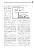 Fisiopatología de la osteoporosis y mecanismo de acción de la PTH - Page 5