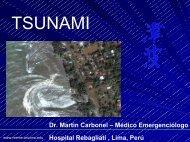 Tsunami - Reeme.arizona.edu