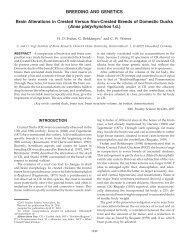 Brain Alterations in Crested Versus Non-Crested Breeds of ...