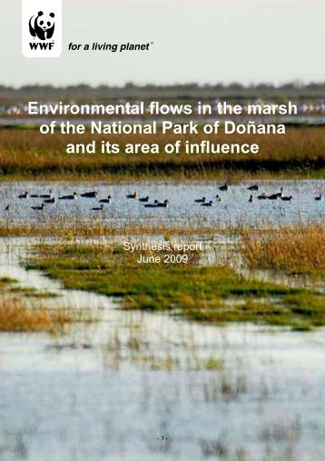 Environmental flows in the marsh of the National Park of ... - WWF