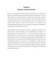 Capítulo 6 Mercado europeo de tomate - Proexport