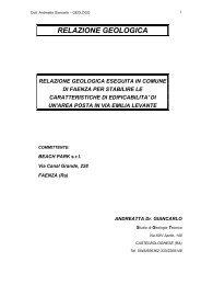 Allegato E - Relazione geologica - Comune di Faenza