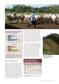 Agricultural Land in the GMS (thousand hectare) in ... - GMS-EOC - Page 5