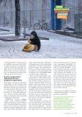 1/2010 - Väestöliitto - Page 5