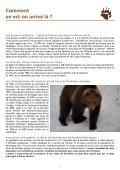 L'ours, contrainte ou atout pour les Pyrénées - Ferus - Page 6