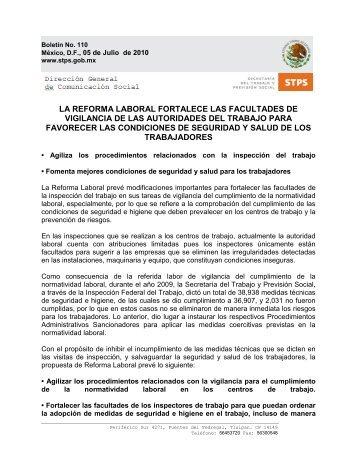 Version en PDF - Secretaría del Trabajo y Previsión Social