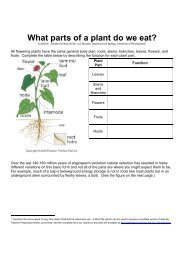 What parts of a plant do we eat? - Serendip