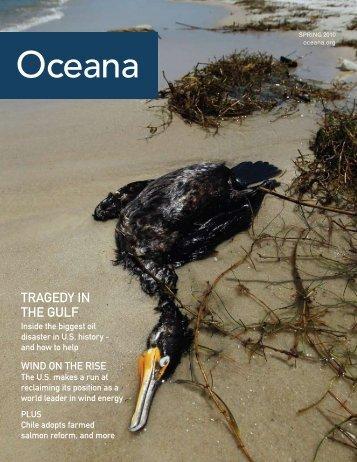 Download Oceana Magazine: Spring 2010 PDF