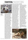 ZVECH, UN POLITICO DA LEGGERE CACCIA: NUOVO ... - Konrad - Page 6