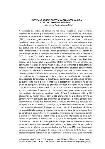 SISTEMAS AGROFLORESTAIS COM A SERINGUEIRA ... - Incaper