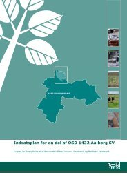 Indsatsplan Aalborg SV-endelig version - Rebild Kommune