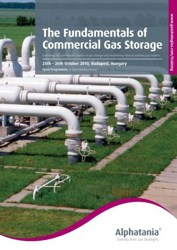 The Fundamentals of Commercial Gas Storage - Gas Strategies