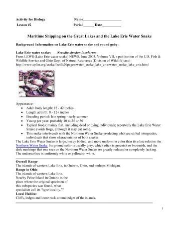 Maritime Shipping on the Great Lakes and the Lake Erie Water Snake