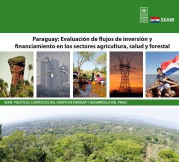 Paraguay: Evaluación de flujos de inversión y ... - UNDPCC.org