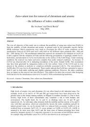 Zero-valent iron for removal of chromium and arsenic – the influence ...