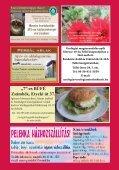 2011 JANUÁR-FEBRUÁR PDF-ben letölthető - Zsámbéki-medence - Page 2