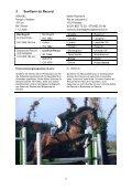 Programm und Liste der verkäuflichen Pferde - Zuchtverband CH ... - Page 5