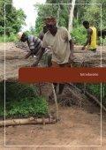 Estrategias de Recaudación de Fondos para los Fondos Ambientales - Page 5