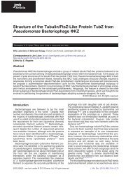 Structure of the Tubulin/FtsZ-Like Protein TubZ from Pseudomonas ...