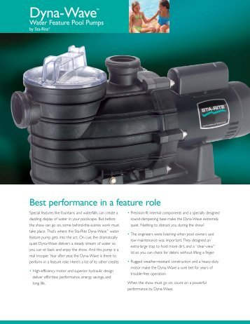 Dyna-Wave Water Feature Pool Pumps - Pentair
