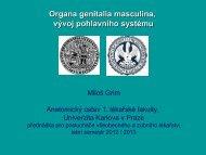 G - Anatomický ústav 1.LF UK - Univerzita Karlova