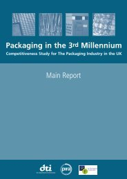 Packaging in the 3rd Millennium Main Report