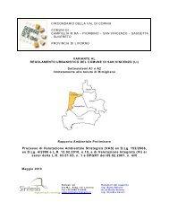 Rapporto Ambientale Preliminare RU_rev2 - Unione dei Comuni del ...