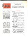 Spandrelite Glass - Seite 3