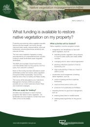 What funding is available to restore native vegetation on my property?