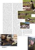 Les tapis et kilims de l'Anatolie orientale - König Tapis - Page 5