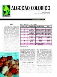 ALGODÃO COLORIDO - Biotecnologia