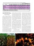 ALGODÃO COLORIDO - Biotecnologia - Page 3
