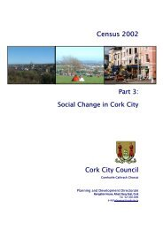 Census 2002 Report Part 3 Social Change in ... - Cork City Council