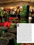 Açaí - Revista Pesquisa FAPESP - Page 2