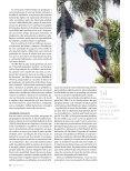 Açaí - Revista Pesquisa FAPESP - Page 3